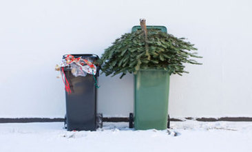 5 Reasons Why People Don't Recycle and 5 Reasons They Should | Charlie's Drinks | Scoop.it