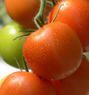Soave Agricultural Group Encourages Women to Improve Health with Tomatoes - | Anthony Soave | Scoop.it