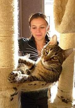 Coeur de félins, l'asso qui récupère et «replace» les chats errants | Edenzo - L'information et l'actualité des chiens et chats | Edenzo.com | Scoop.it