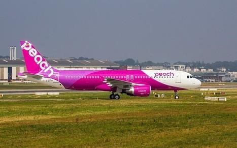 Ageing population forces flight cancellations in Japan as pilots retire en masse  - Telegraph | Positive climb | Scoop.it