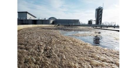 En Alsace, une station d'épuration carbure au jus de choucroute | veillaux environnement | Scoop.it
