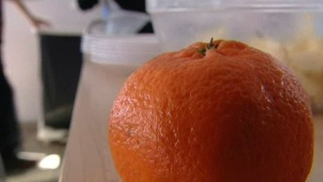 Premier repas 100% bio servi dans les cantines de Grenoble | La Bio en restauration Collective | Scoop.it