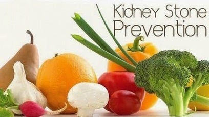 Telezyme™ - Premier Nutritional's Blog: KIDNEY STONE PREVENTION | Health | Scoop.it