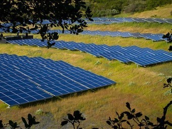 Solar farms can enhance biodiversity and sequester soil carbon too | Zero Footprint | Scoop.it