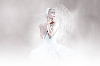 17 marzo. Swan Lake — Showings — Cinemas — Royal Opera House | Arte, Literatura, Música, Cine, Historia... | Scoop.it