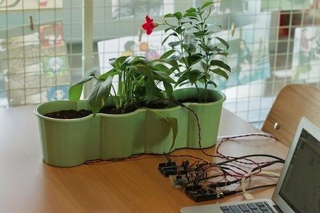 A breathing plant installation creating unusual sensations | Arduino, Netduino, Rasperry Pi! | Scoop.it