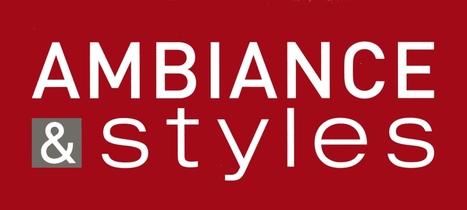 Clermont-Ferrand accueillera la 100ème franchise Ambiance & Styles   Actualité de la Franchise   Scoop.it