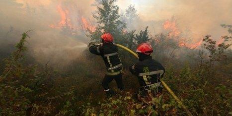 Dordogne : 40 ans après les derniers incendies géants, le risque demeure | Agriculture en Dordogne | Scoop.it