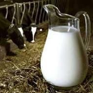 Γάλα ή Δηλητήριο;   ΕΠΙΚΙΝΔΥΝΕΣ ΤΡΟΦΕΣ ΚΑΙ ΟΥΣΙΕΣ   Scoop.it