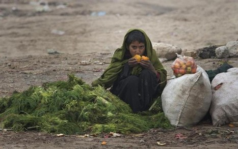 As millions go hungry, Asia battles food waste | Waste Management | Scoop.it