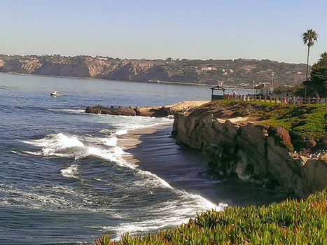 Thriving Nature In Photos : Why I Fell In Love With La Jolla Beach in Southern California   Travel   Scoop.it