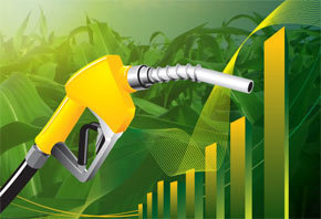 South African Airways et Boeing investissent en Afrique sur les biocarburants durables | Opportunités à MT | Scoop.it
