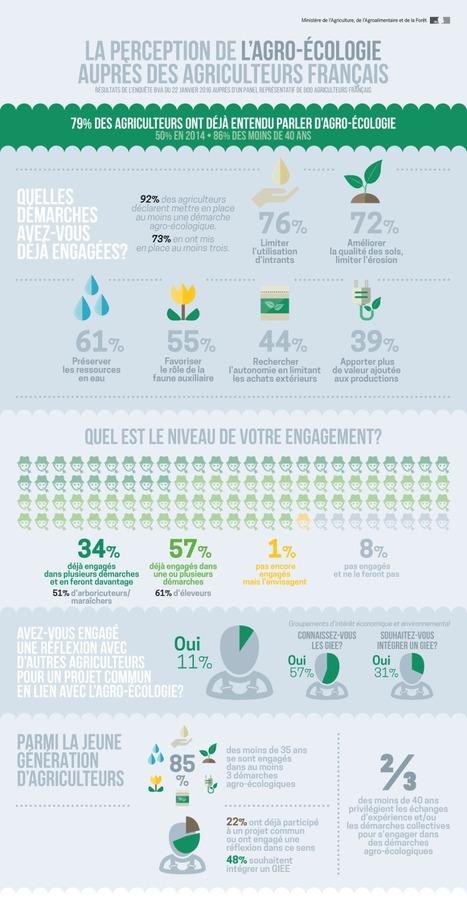 Les infographies - Ministère de l'agriculture, de l'agroalimentaire et de la forêt | Graines de doc | Scoop.it