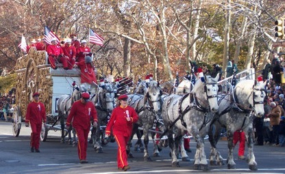 Horse Drawn Carriage in Macy's Thanksgiving Day Parade | World Insider Blog | Scoop.it
