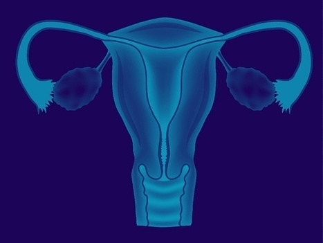 The High-Tech Future of the Uterus: Scientists are pursuing the new frontier of a bioengineered womb | Amazing Science | Scoop.it