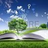biblio Mart