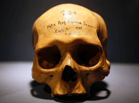 Death on display in new Wellcome Collection exhibition celebrating the inevitable | The Independent | Kiosque du monde : A la une | Scoop.it