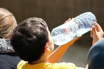 Contenants alimentaires : des chercheurs soulignent les dangers des bisphénols | Toxique, soyons vigilant ! | Scoop.it