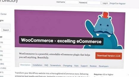 eCommerce : Automattic rachète WooCommerce pour WordPress - #Arobasenet.com | Worpress & co | Scoop.it