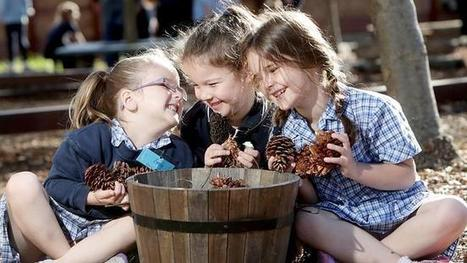 Children need more play and less formal learning, education experts warn - Courier Mail | Remembering To Play | Scoop.it