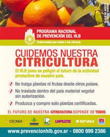 México: líder en técnicas de control biológico contra el HLB ...   Protección vegetal   Scoop.it