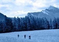 Trail : capitale Saint-Pierre-de-Chartreuse - Le tourisme en Rhône-Alpes - Espace professionnels | Musée de la Grande Chartreuse | Scoop.it