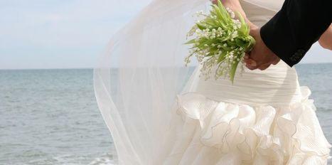 faire-part magazine mariage voeux   bio nature   Scoop.it