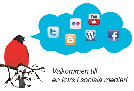 Delning.nu - webbkurs i sociala medier | IT-Lyftet & IT-Piloterna | Scoop.it