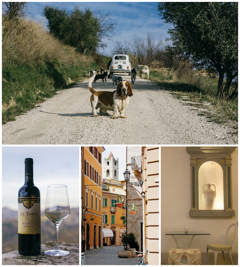 Le Marche Wines on the Wine Enthusiast Magazine | Fine Wines | Scoop.it