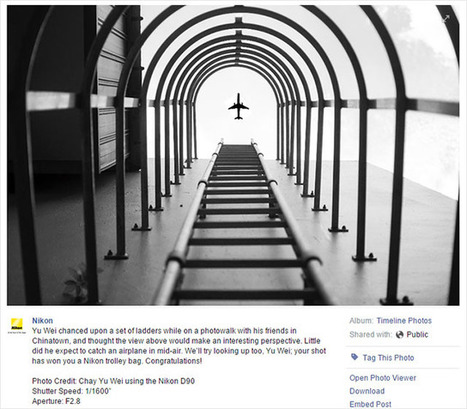 Nikon Awards Prize to Badly 'Shopped Photo, Hilarity Ensues | xposing world of Photography & Design | Scoop.it
