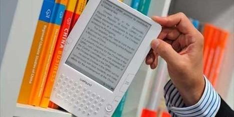 El sector editorial pide una bajada del IVA cultural tras disminuir la facturación un 13% | Tecnologías en unidades de información | Scoop.it