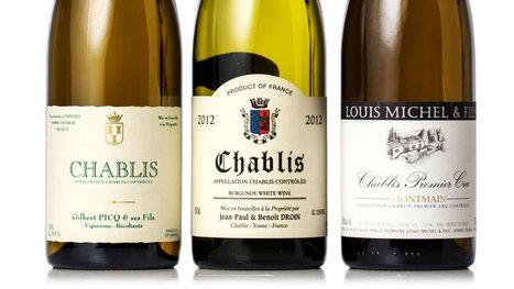 Your Next Lesson: Chablis | Vitabella Wine Daily Gossip | Scoop.it