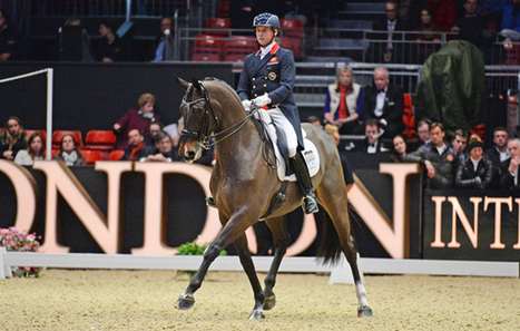 Carl Hester: How about putting in some effort? [H&H VIP] - Horse & Hound | Equine massage | Scoop.it