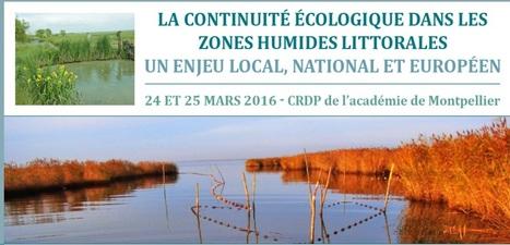 """Colloque """"La continuité écologique dans les zones humides littorales : un enjeu local, national et européen""""   ECOLOGIE BIODIVERSITE PAYSAGE   Scoop.it"""