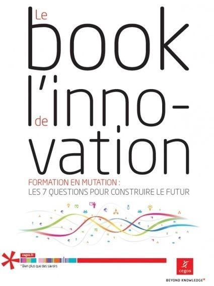 Le marketing de la formation passe par l'Innovation|Le blog de la Stratégie marketing | People & Organization | Scoop.it