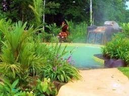 Blue River Resort Costa Rica | costaricalearn | Scoop.it