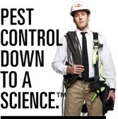 Orkin Termite Control & Protection | Affordable Pest Control Union City | Scoop.it