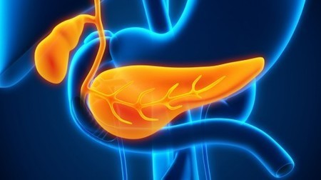 Protein converts pancreatic cancer cells back into healthy cells | Longevity science | Scoop.it