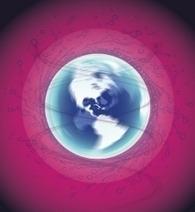 A Toulouse, la Nuit des réseaux change le monde, le 4 décembre | Actu webmarketing et marketing mobile | Scoop.it