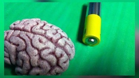 Ankara ajatteleminen polttaa kaloreita | Psykologia | Scoop.it