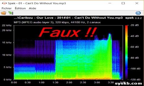 Comment vérifier la véritable qualité audio de vos fichiers MP3 et FLAC | Freewares | Scoop.it