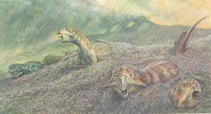 Reassessing China's dinosaur 'Pompeii'   Geology   Scoop.it