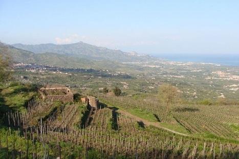 Ecovillaggi, l'alternativa al caos delle città conquista l'Italia - Lettera43 | ecohousing | Scoop.it