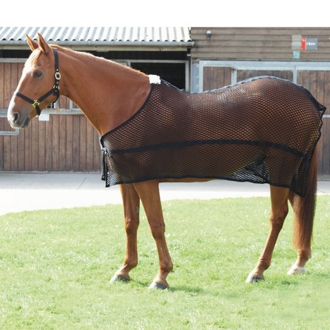 Sweat Rugs for Horses - Robinsonsequestrian | Business | Scoop.it