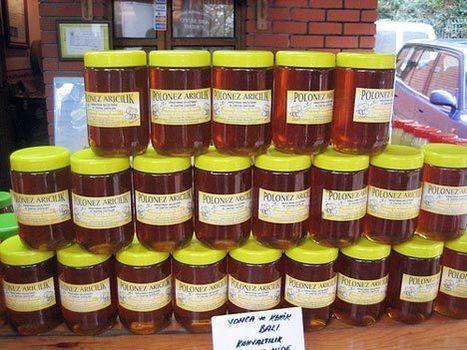Turkish Beekeepers Abuzz Over Pesticide Concerns   Garden Designer   Scoop.it
