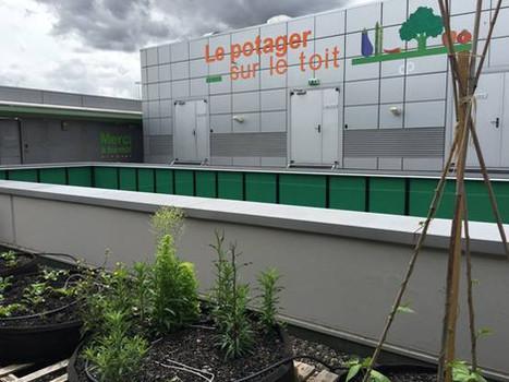 Visitez le potager sur le toit de la Clinique Pasteur de Toulouse, jeudi 23 juin | Clinique Pasteur vue par le Web | Scoop.it