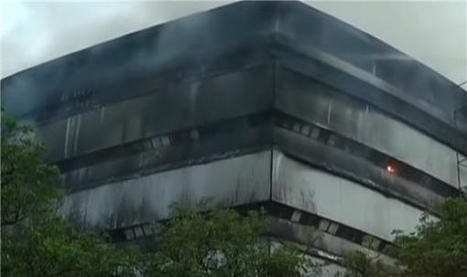 Fire Destroys Delhi's Natural History Museum - artnet News | Heritage in danger (illicit traffic, emergencies, restitutions)-Patrimoine en danger | Scoop.it