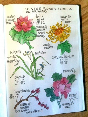 Chinese Top 10 Famous Flowers - Chinaflower214   lifestyle KevinYE   Scoop.it