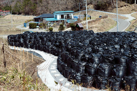 Forced to Flee Radiation, Fearful Japanese Villagers Are Reluctant to Return | Sustain Our Earth | Scoop.it
