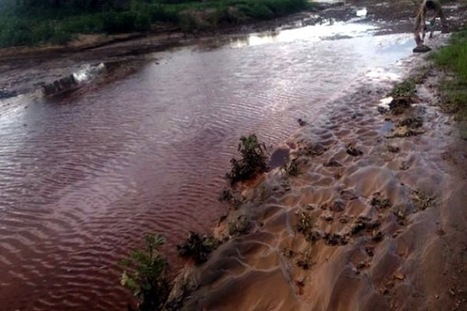 New toxic spill reported at Mexican copper mine | Sustain Our Earth | Scoop.it